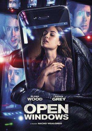 Open_Windows-234261313-large